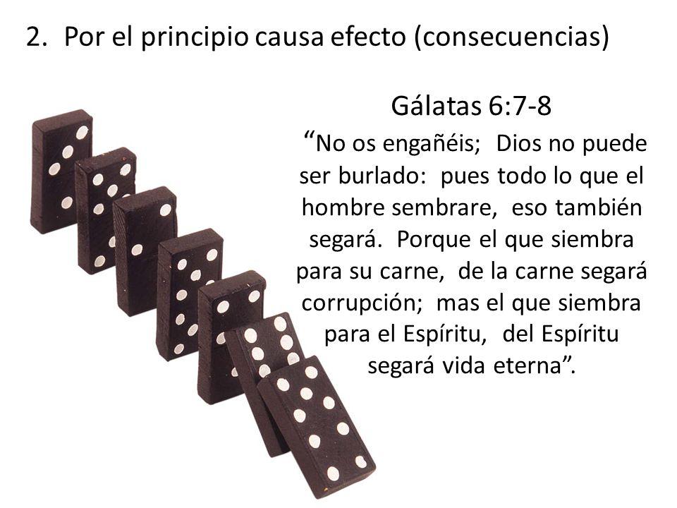 Gálatas 6:7-8 No os engañéis; Dios no puede ser burlado: pues todo lo que el hombre sembrare, eso también segará. Porque el que siembra para su carne,