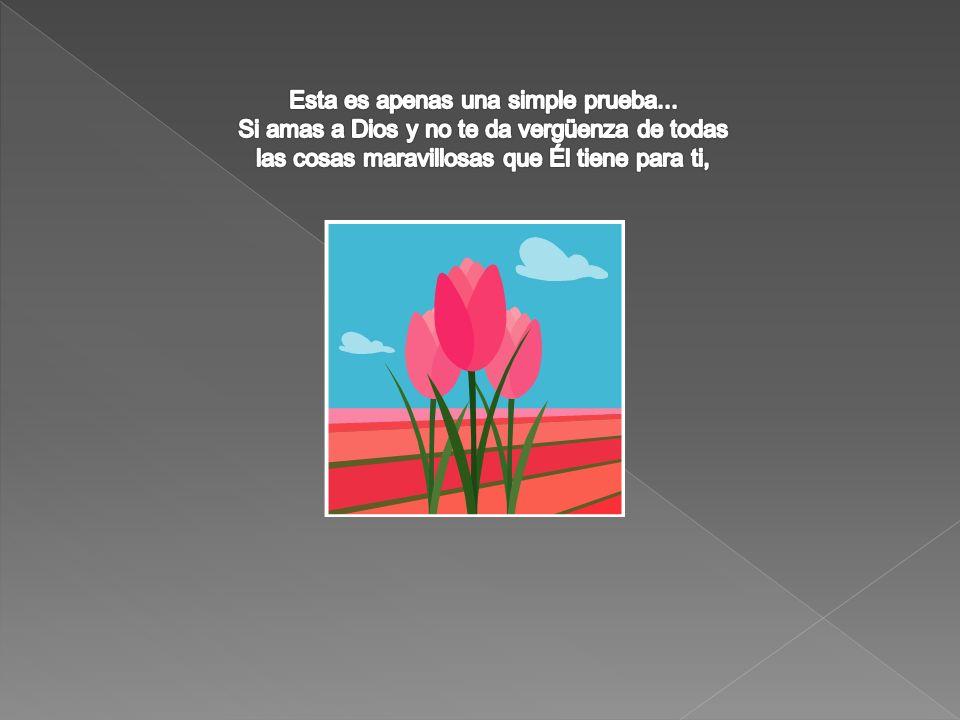 (Filipenses 4:13)