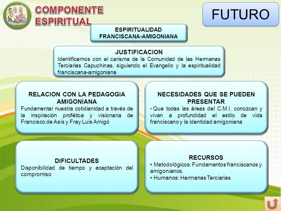 FUTURO ESPIRITUALIDAD FRANCISCANA-AMIGONIANA DIFICULTADES Disponibilidad de tiempo y aceptación del compromiso DIFICULTADES Disponibilidad de tiempo y