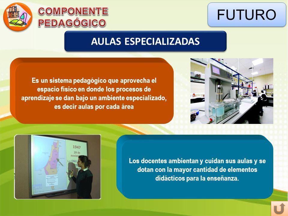 FUTURO AULAS ESPECIALIZADAS Es un sistema pedagógico que aprovecha el espacio físico en donde los procesos de aprendizaje se dan bajo un ambiente espe