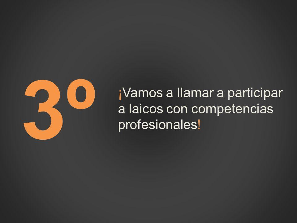 3º3º ¡Vamos a llamar a participar a laicos con competencias profesionales!