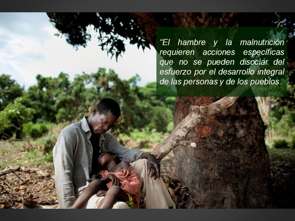 El hambre y la malnutrición requieren acciones específicas que no se pueden disociar del esfuerzo por el desarrollo integral de las personas y de los