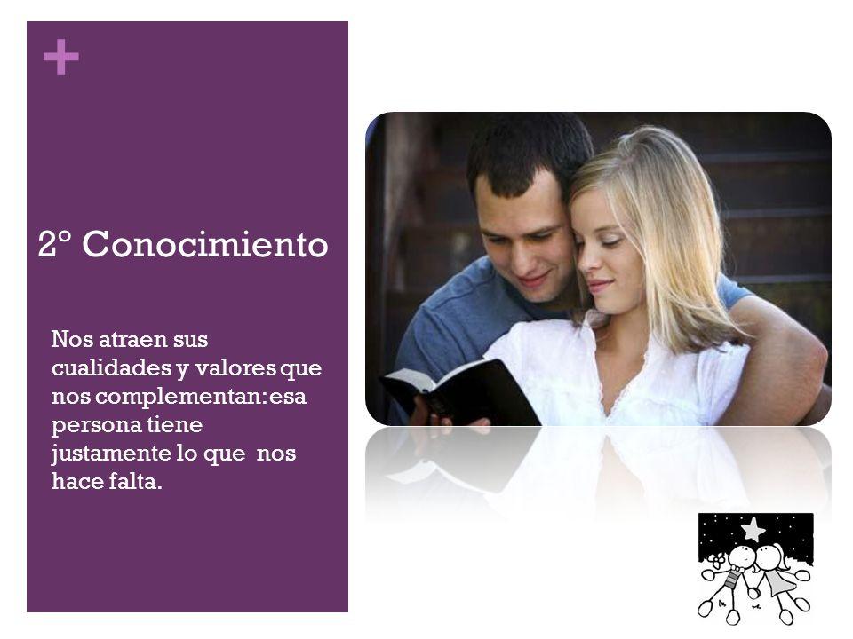 + 2º Conocimiento Nos atraen sus cualidades y valores que nos complementan: esa persona tiene justamente lo que nos hace falta.