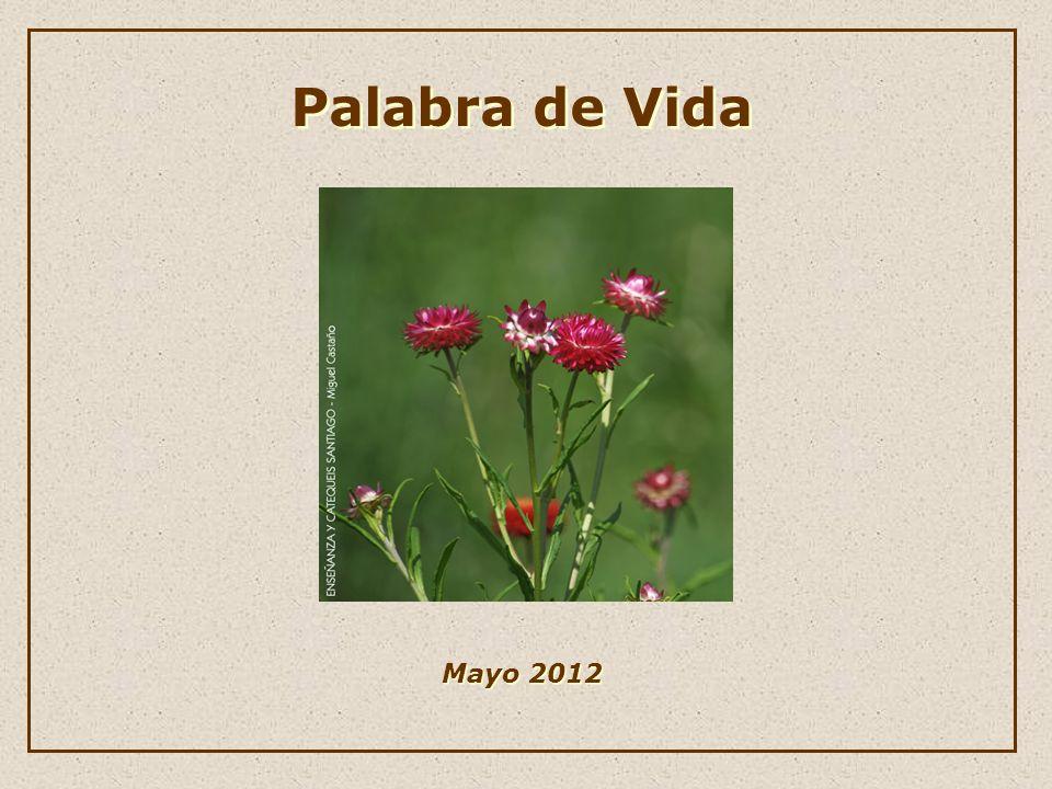 Palabra de Vida Palabra de Vida Mayo 2012 Mayo 2012