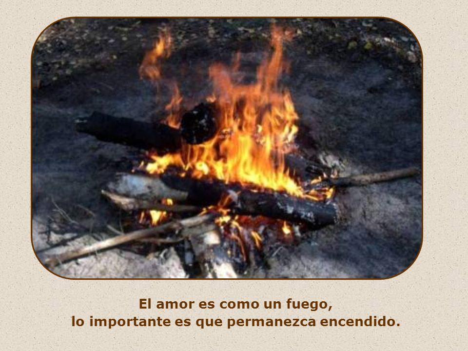 «Yo he venido para traer fuego al mundo, y ¡cómo me gustaría que ya estuviera ardiendo!» (Lc 12,49)