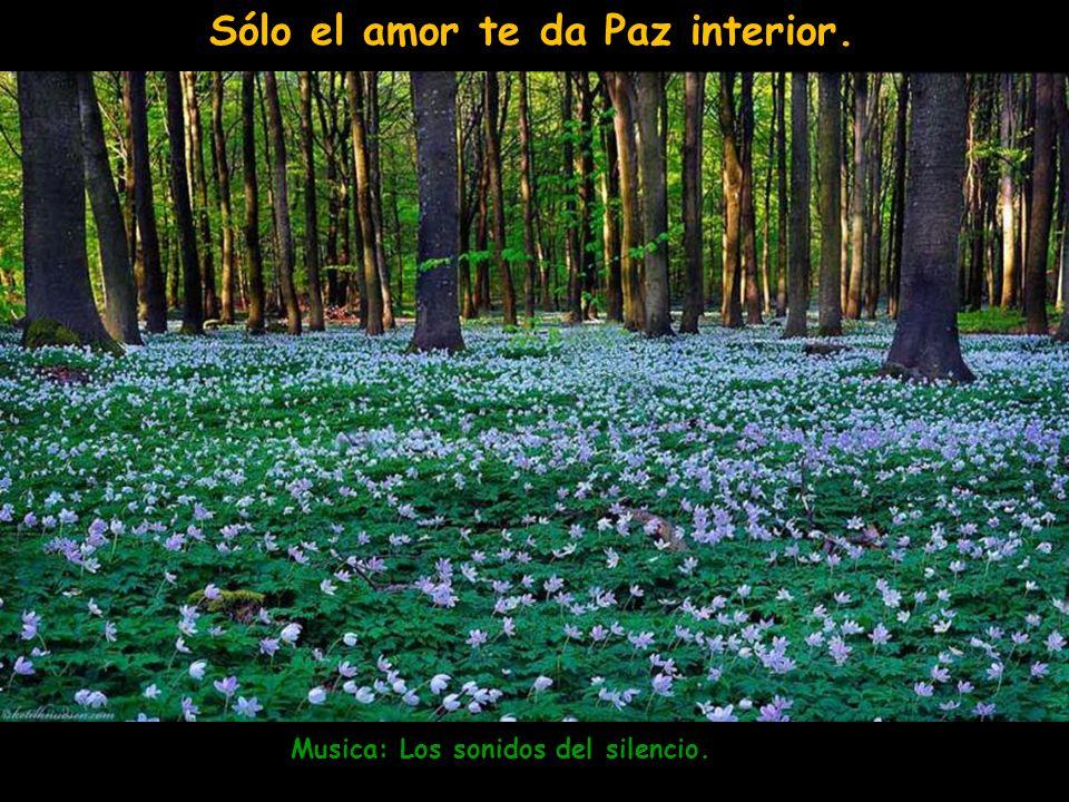 Musica: Los sonidos del silencio. Sólo el amor te da Paz interior.