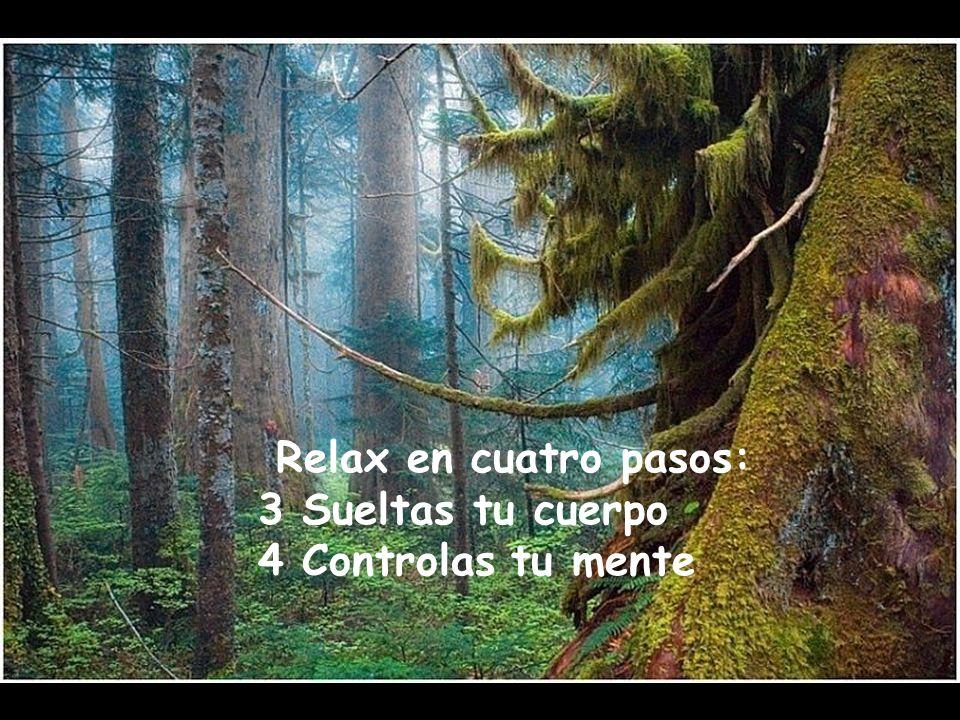 Relax en cuatro pasos: 1 Cierras los ojos 2 Respiras despacio