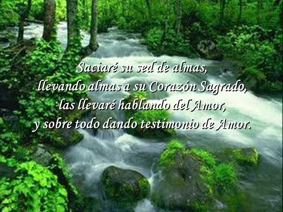 Mi corazón lo llenaré de Amor, recibiéndolo en las Sagradas Formas, uniéndome siempre a Él por medio de la oración. Así sanaré las heridas de su Coraz