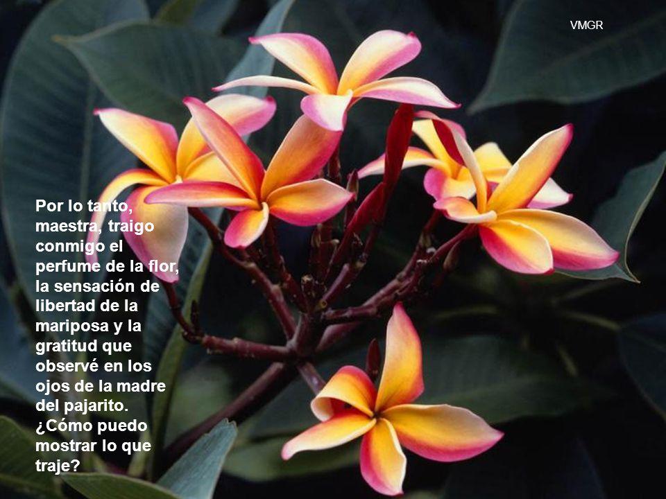 Por lo tanto, maestra, traigo conmigo el perfume de la flor, la sensación de libertad de la mariposa y la gratitud que observé en los ojos de la madre