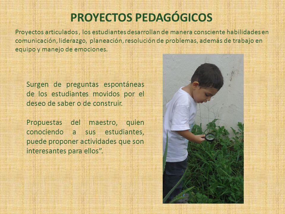 PROYECTOS PEDAGÓGICOS Proyectos articulados, los estudiantes desarrollan de manera consciente habilidades en comunicación, liderazgo, planeación, reso