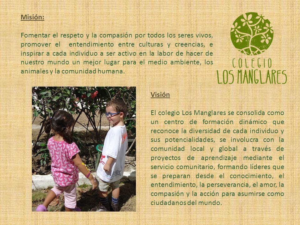 El Colegio LOS MANGLARES nace como una respuesta a la necesidad de formación integral alternativa, que desde la primera infancia se basa en el entendimiento y respeto de nuestra relación con el planeta y los seres que lo habitamos.