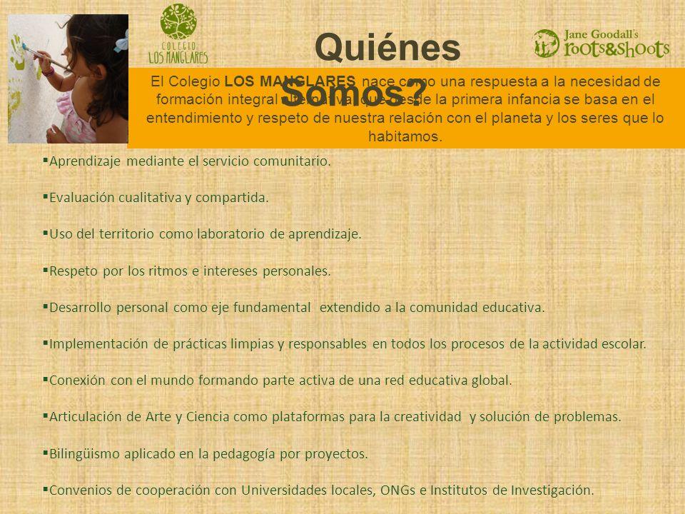 El Colegio LOS MANGLARES nace como una respuesta a la necesidad de formación integral alternativa, que desde la primera infancia se basa en el entendi