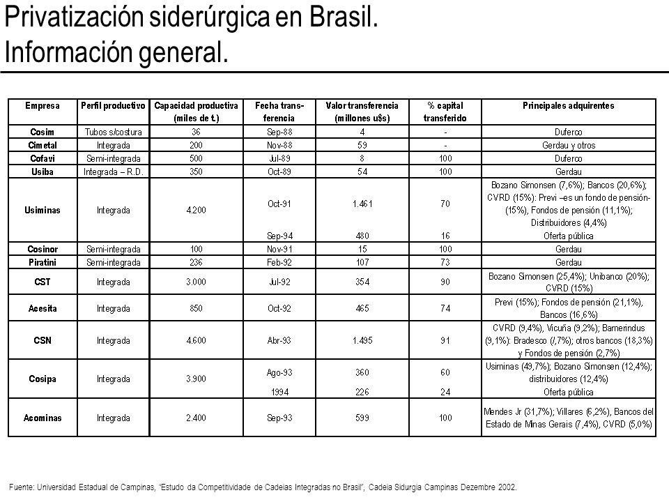 Privatización siderúrgica en Brasil. Información general. Fuente: Universidad Estadual de Campinas, Estudo da Competitividade de Cadeias Integradas no