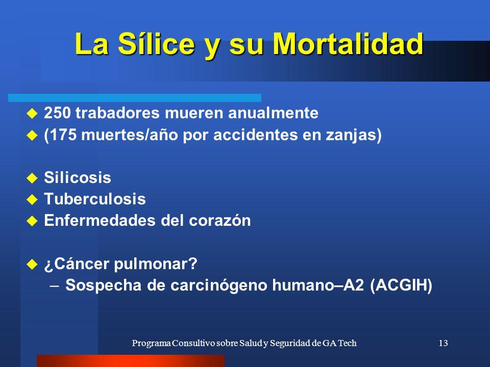 Programa Consultivo sobre Salud y Seguridad de GA Tech13 La Sílice y su Mortalidad u 250 trabadores mueren anualmente u (175 muertes/año por accidente