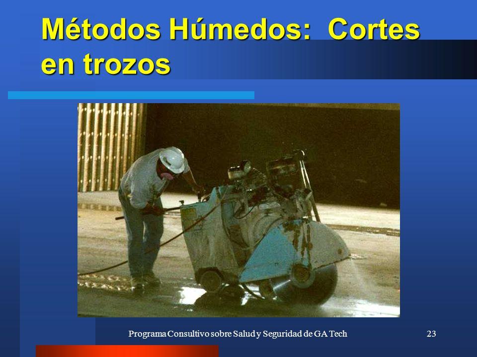 Programa Consultivo sobre Salud y Seguridad de GA Tech23 Métodos Húmedos: Cortes en trozos