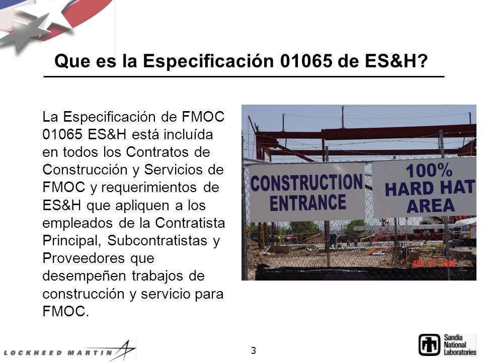 3 Que es la Especificación 01065 de ES&H.