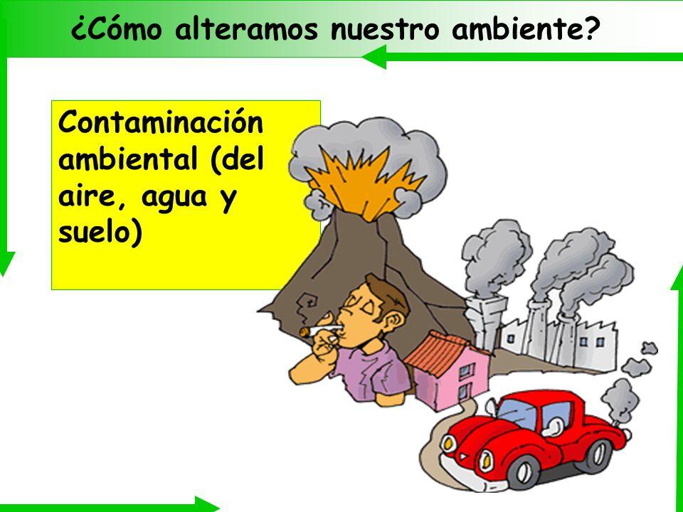 ¿Cómo alteramos nuestro ambiente? El efecto invernadero