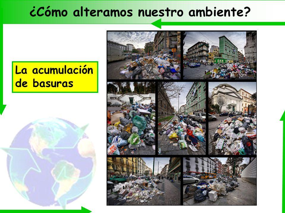 ¿Cómo alteramos nuestro ambiente? La acumulación de basuras