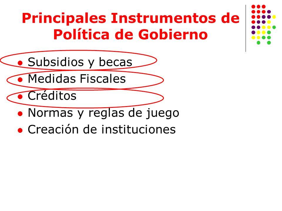 Principales Instrumentos de Política de Gobierno Subsidios y becas Medidas Fiscales Créditos Normas y reglas de juego Creación de instituciones