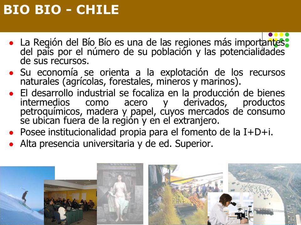 La Región del Bío Bío es una de las regiones más importantes del país por el número de su población y las potencialidades de sus recursos. Su economía