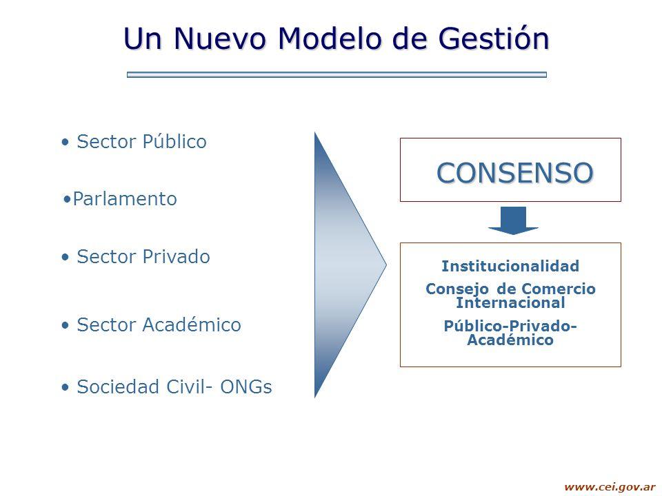 www.cei.gov.ar Sector Público Sector Privado Sector Académico CONSENSO Parlamento Sociedad Civil- ONGs Un Nuevo Modelo de Gestión Institucionalidad Co
