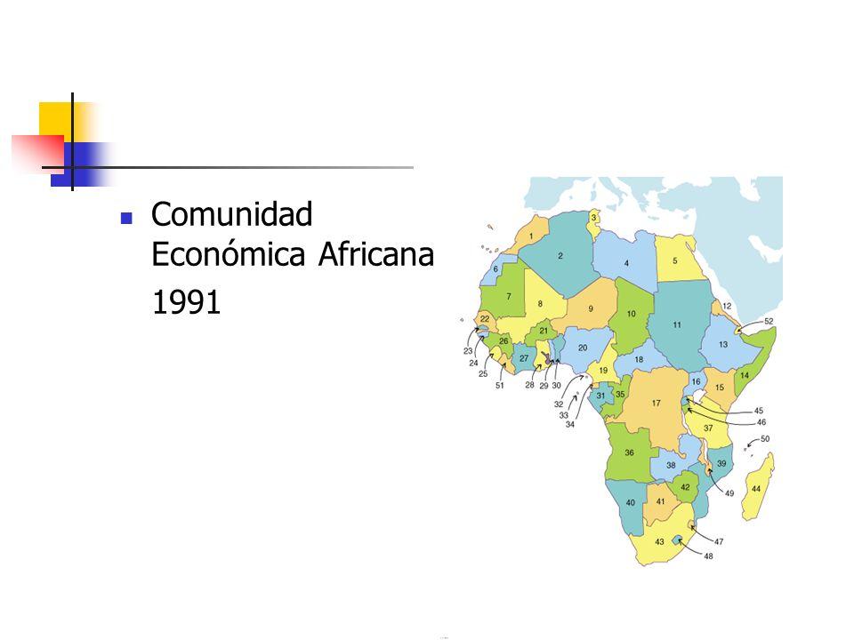 Comunidad Económica Africana 1991