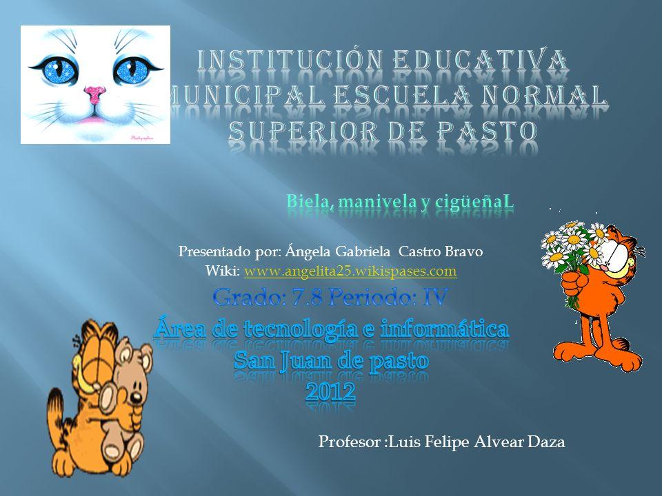 Profesor :Luis Felipe Alvear Daza