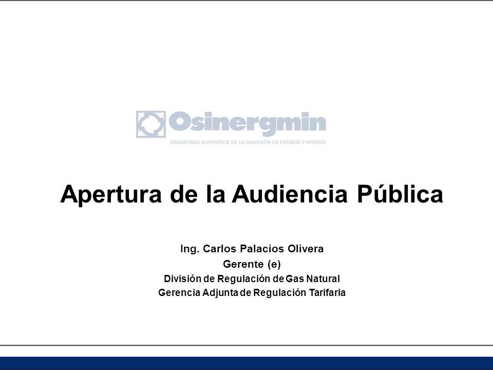 Apertura de la Audiencia Pública Ing.