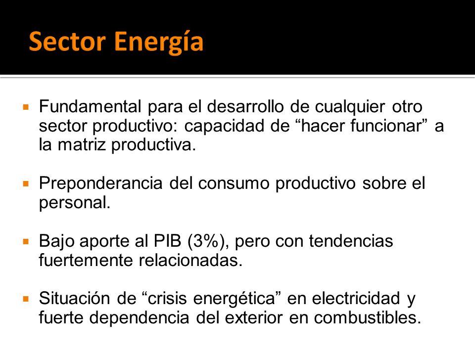 Fundamental para el desarrollo de cualquier otro sector productivo: capacidad de hacer funcionar a la matriz productiva. Preponderancia del consumo pr
