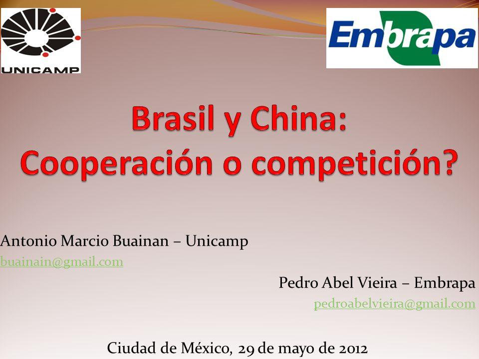 Antonio Marcio Buainan – Unicamp buainain@gmail.com Pedro Abel Vieira – Embrapa pedroabelvieira@gmail.com Ciudad de México, 29 de mayo de 2012