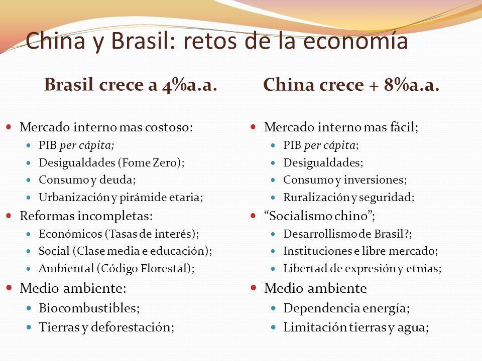 Brasil crece a 4%a.a. China crece + 8%a.a. Mercado interno mas costoso: PIB per cápita; Desigualdades (Fome Zero); Consumo y deuda; Urbanización y pir