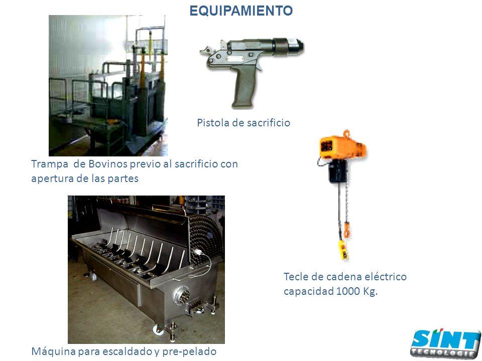 Trampa de Bovinos previo al sacrificio con apertura de las partes Pistola de sacrificio Tecle de cadena eléctrico capacidad 1000 Kg.