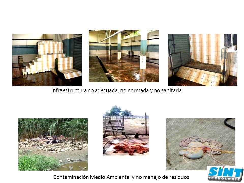 Infraestructura no adecuada, no normada y no sanitaria Contaminación Medio Ambiental y no manejo de residuos
