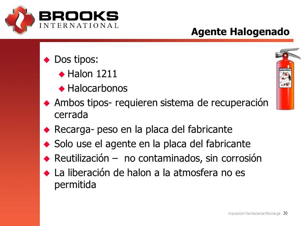 Inspection Maintenance Recharge 30 u Dos tipos: u Halon 1211 u Halocarbonos u Ambos tipos- requieren sistema de recuperación cerrada u Recarga- peso e