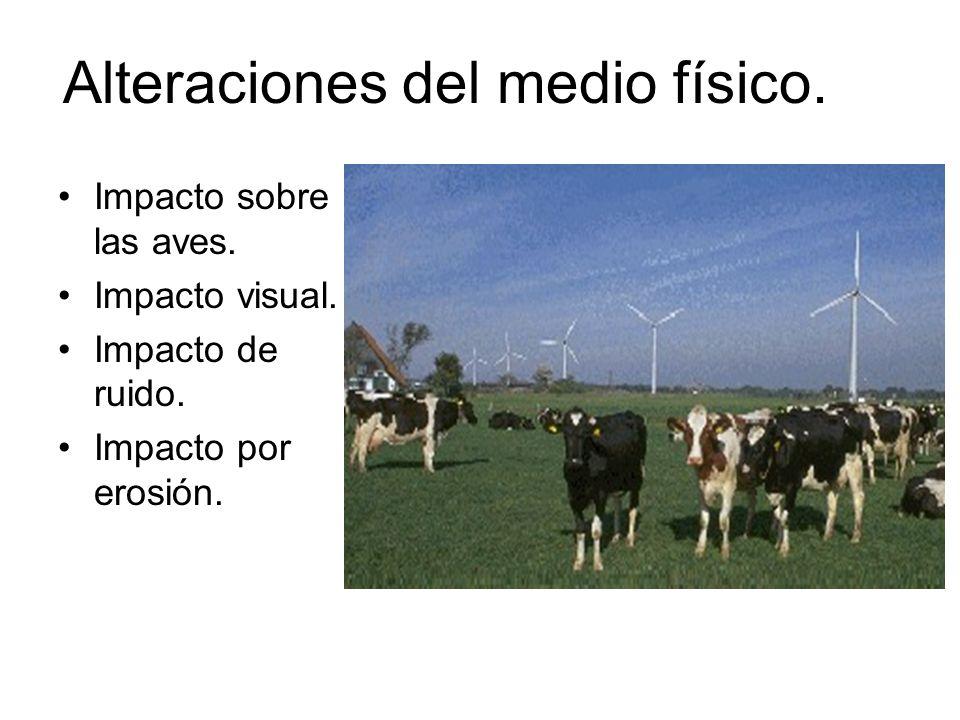 Alteraciones del medio físico. Impacto sobre las aves. Impacto visual. Impacto de ruido. Impacto por erosión.
