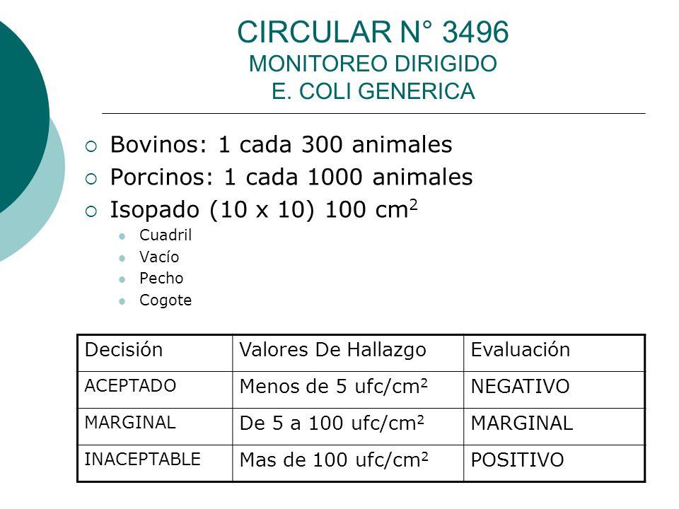 CIRCULAR N° 3496 MONITOREO DIRIGIDO E. COLI GENERICA Bovinos: 1 cada 300 animales Porcinos: 1 cada 1000 animales Isopado (10 x 10) 100 cm 2 Cuadril Va
