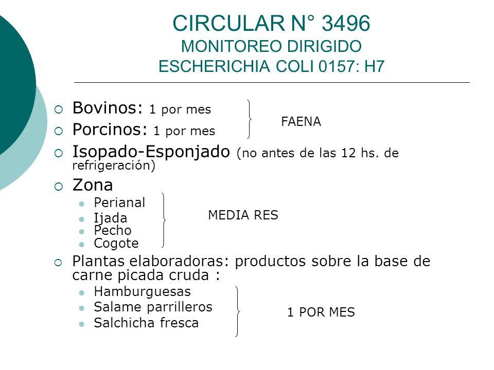 CIRCULAR N° 3496 MONITOREO DIRIGIDO ESCHERICHIA COLI 0157: H7 Bovinos: 1 por mes Porcinos: 1 por mes Isopado-Esponjado (no antes de las 12 hs. de refr