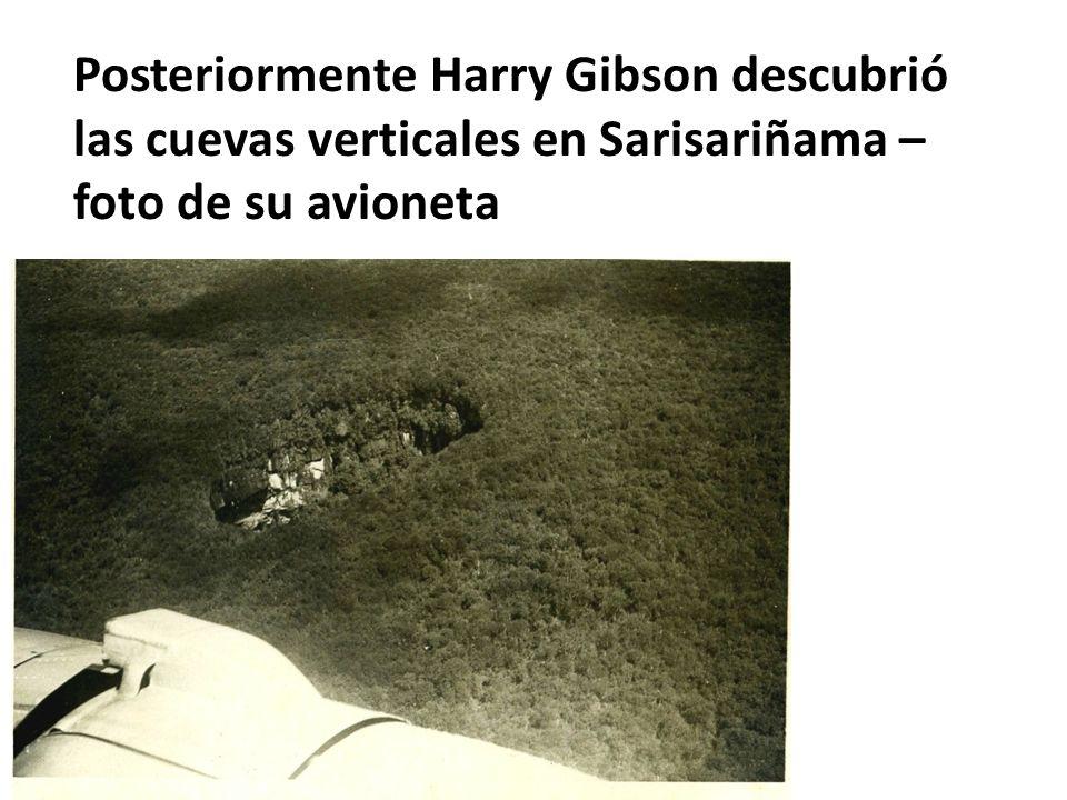 Posteriormente Harry Gibson descubrió las cuevas verticales en Sarisariñama – foto de su avioneta
