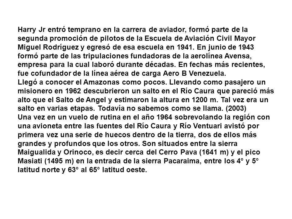 Harry Jr entró temprano en la carrera de aviador, formó parte de la segunda promoción de pilotos de la Escuela de Aviación Civil Mayor Miguel Rodríguez y egresó de esa escuela en 1941.