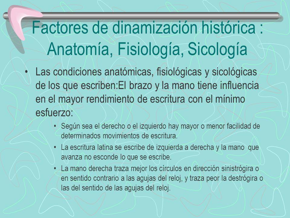 Factores de dinamización histórica : Anatomía, Fisiología, Sicología Las condiciones anatómicas, fisiológicas y sicológicas de los que escriben:El bra