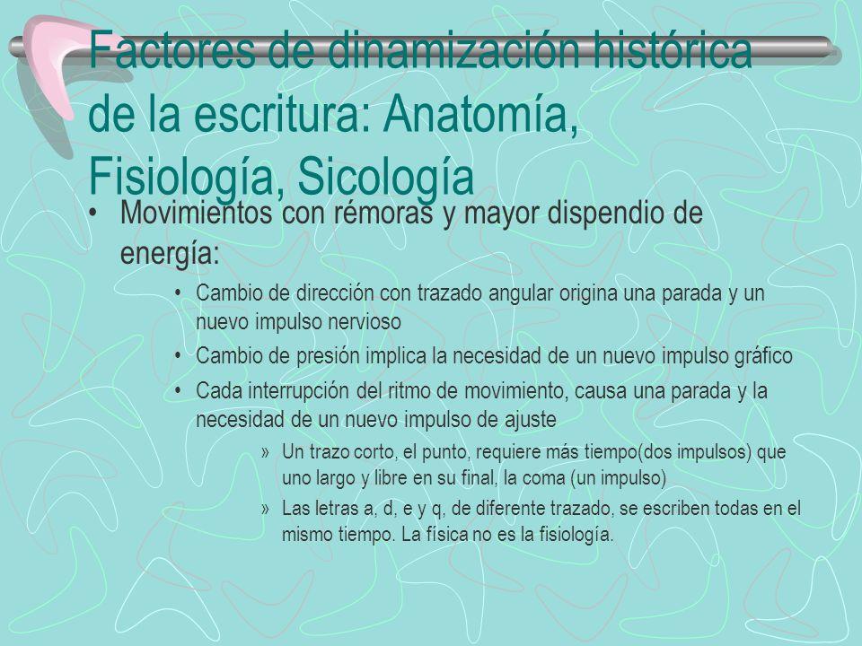 Factores de dinamización histórica de la escritura: Anatomía, Fisiología, Sicología Movimientos con rémoras y mayor dispendio de energía: Cambio de di