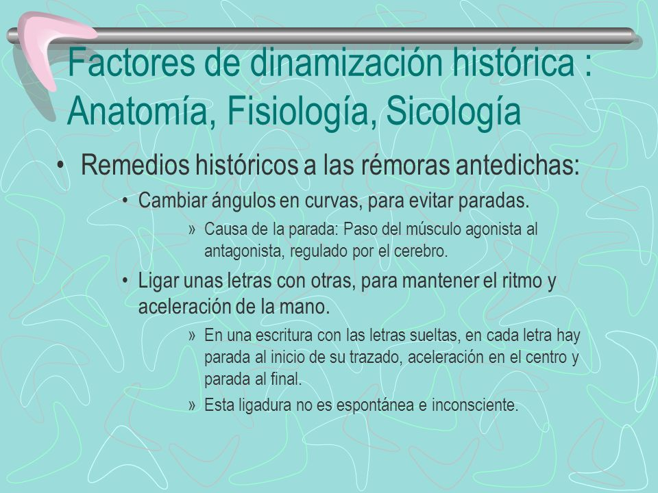 Factores de dinamización histórica : Anatomía, Fisiología, Sicología Remedios históricos a las rémoras antedichas: Cambiar ángulos en curvas, para evi
