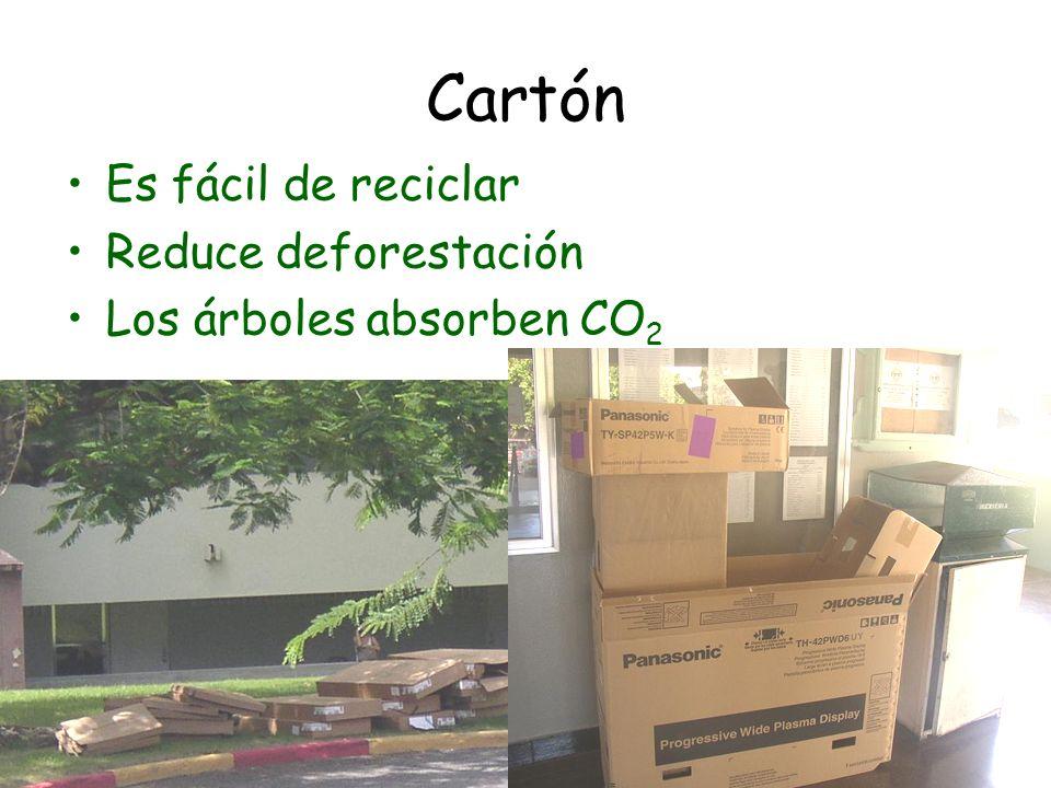 Cartón Es fácil de reciclar Reduce deforestación Los árboles absorben CO 2