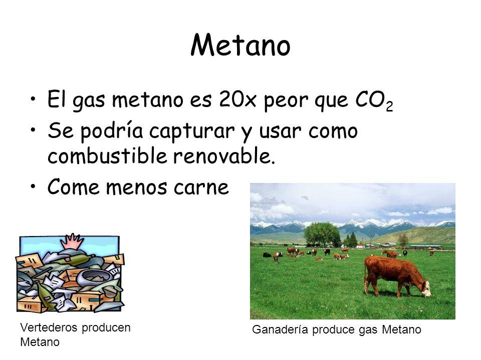 Metano El gas metano es 20x peor que CO 2 Se podría capturar y usar como combustible renovable.