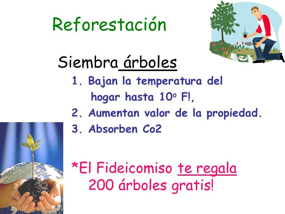 Reforestación Siembra árboles 1.Bajan la temperatura del hogar hasta 10 o F!, 2.Aumentan valor de la propiedad.