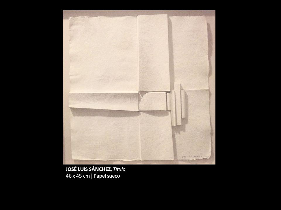 JOSÉ LUIS SÁNCHEZ, Título 46 x 45 cm Papel sueco