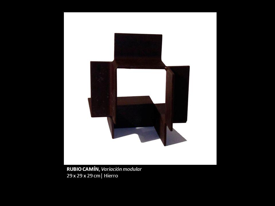 RUBIO CAMÍN, Variación modular 29 x 29 x 29 cm Hierro