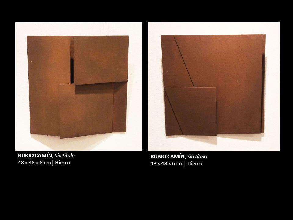 RUBIO CAMÍN, Sin título 48 x 48 x 8 cm Hierro RUBIO CAMÍN, Sin título 48 x 48 x 6 cm Hierro