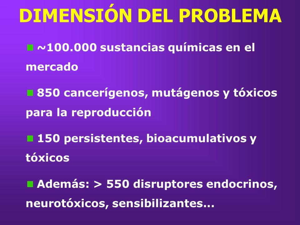 DIMENSIÓN DEL PROBLEMA ~100.000 sustancias químicas en el mercado 850 cancerígenos, mutágenos y tóxicos para la reproducción 150 persistentes, bioacum