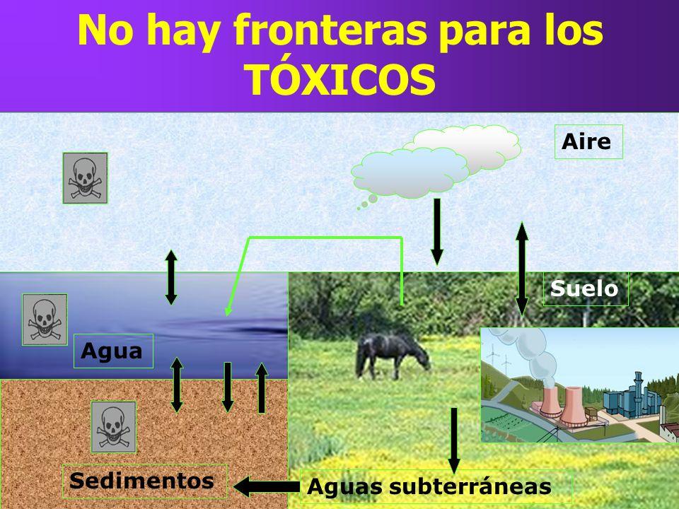 No hay fronteras para los TÓXICOS Suelo Aguas subterráneas Agua Sedimentos Aire